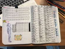 """Big picture"" goal tracker and training plan"